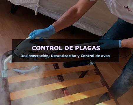 Eliminar cucarachas, chinches y ratones en Barcelona