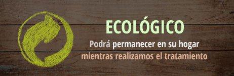 Erradicación de plagas con productos ecológicos